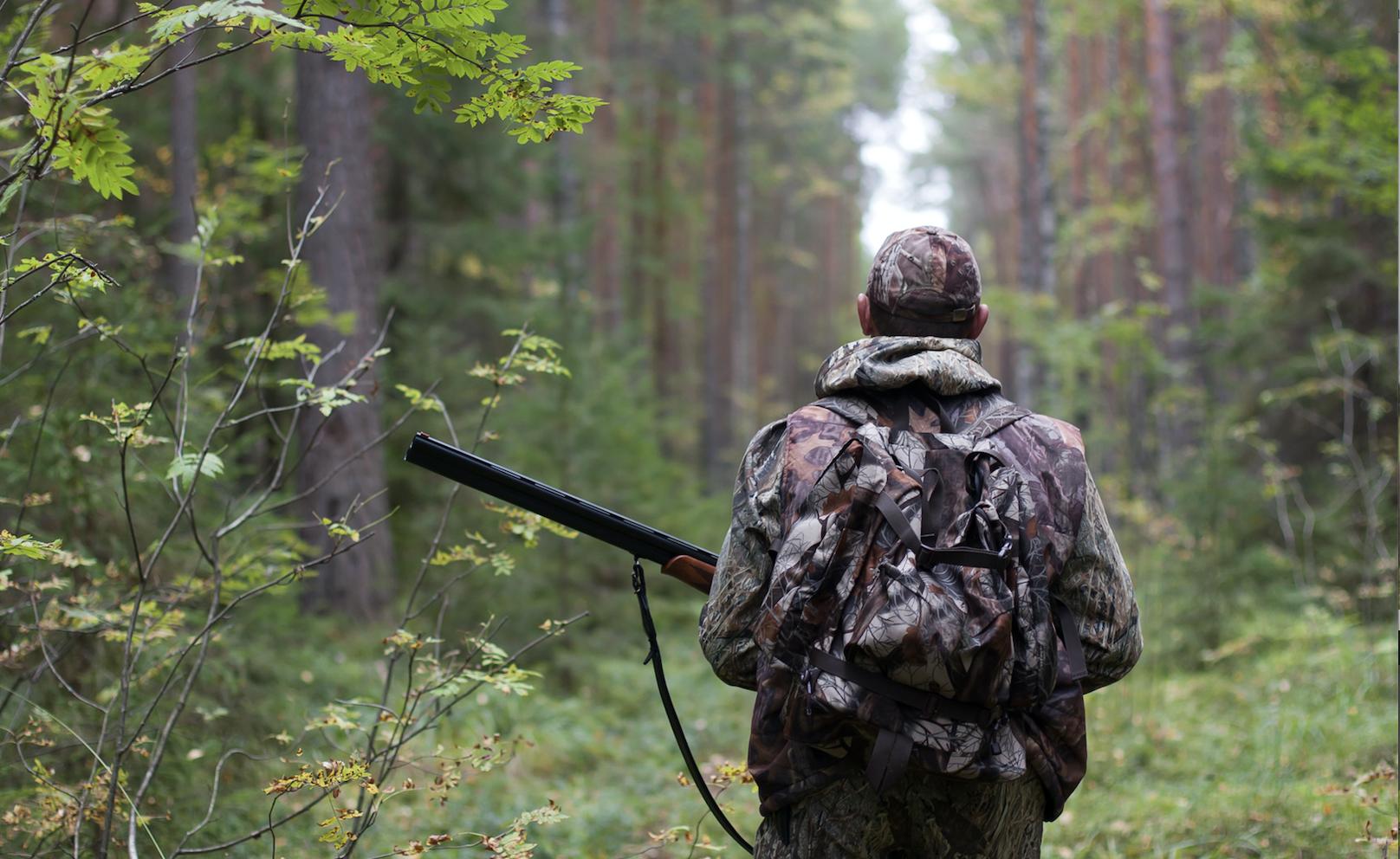 La Guida - Le associazioni ambientaliste chiedono di mantenere la sospensione della stagione venatoria