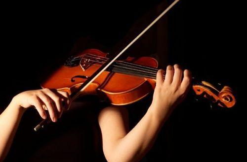 La Guida - I muscoli del musicista all'opera
