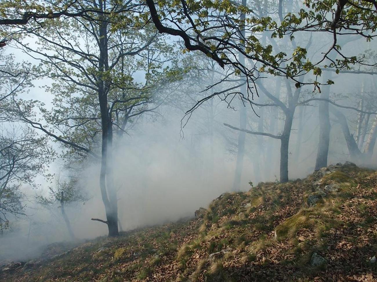 La Guida - Sampeyre, incendio boschivo in borgata Vallone