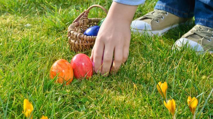 La Guida - A Savigliano la caccia alle uova di Pasqua