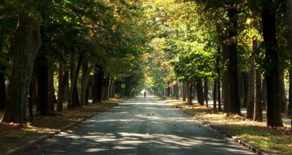 La Guida - Revocata l'area pedonale del viale Angeli