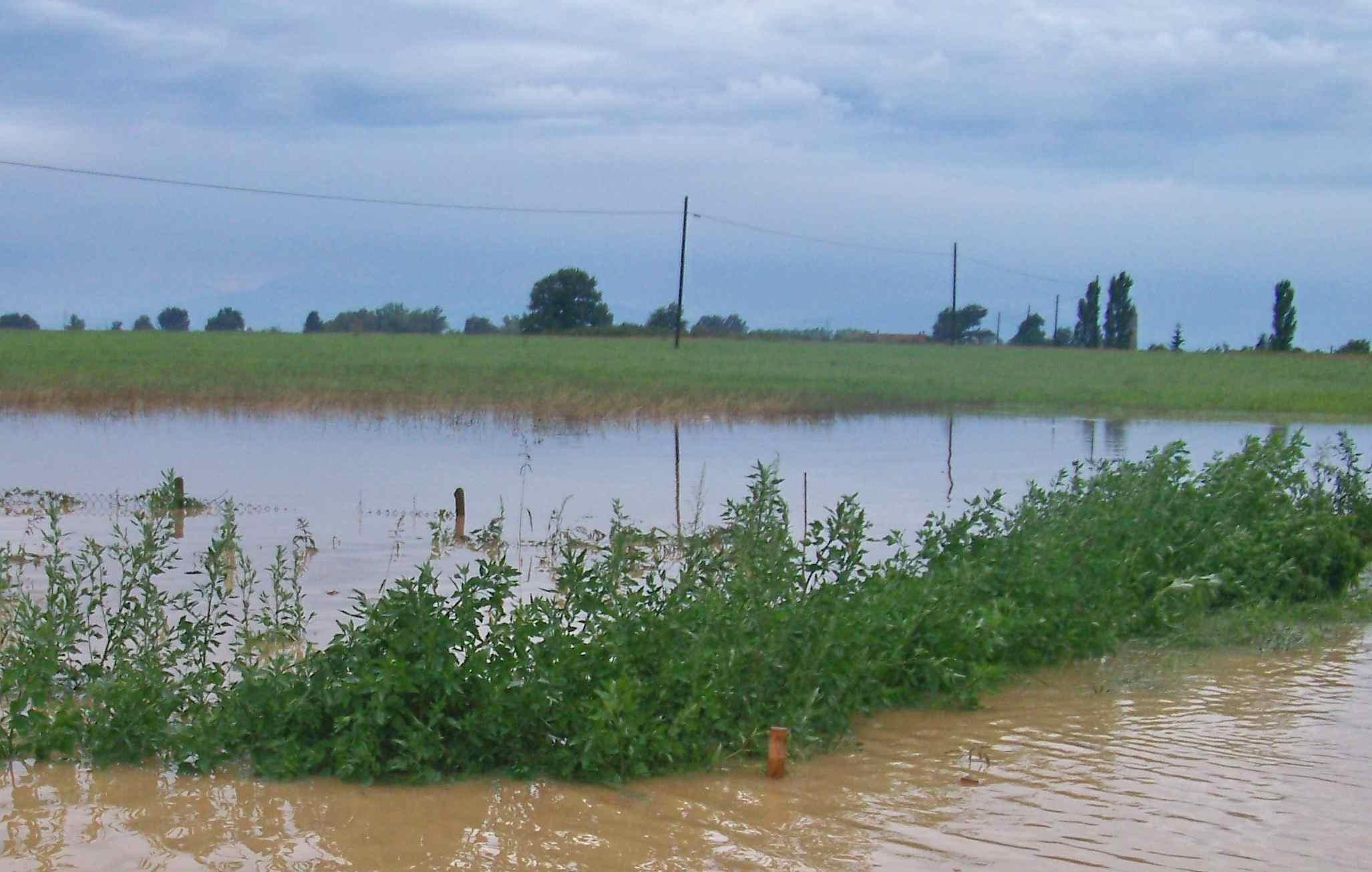 La Guida - Maltempo e danni all'agricoltura, i monitoraggi di Coldiretti