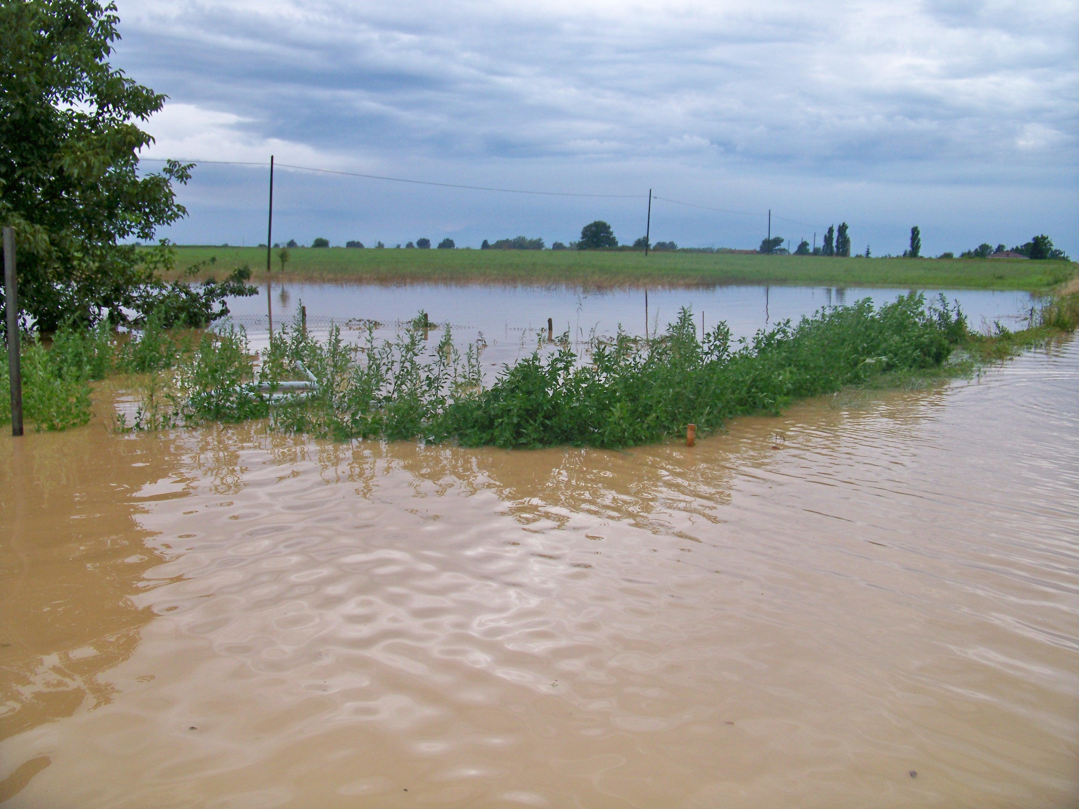 """La Guida - Maltempo, Coldiretti: """"Gestire meglio il suolo per prevenire problemi"""""""