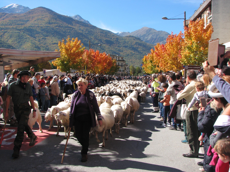 La Guida - A Demonte la Grande Fiera di San Luca