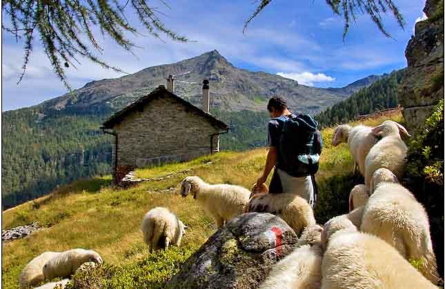 La Guida - Nuove risorse per attività imprenditoriali in aree montane
