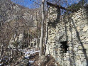 I ruderi delle grange Ciancamentes, ormai abbandonate e quasi sepolte dal bosco