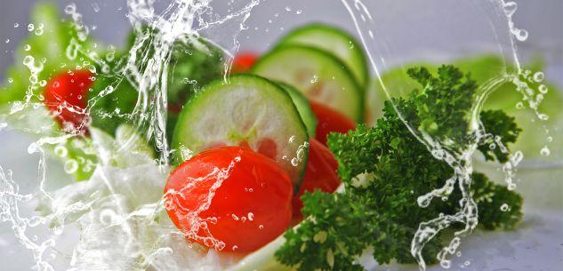 """La Guida - A Cuneo """"Io vivo sano"""", una mostra-laboratorio sulla corretta alimentazione"""