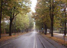 La Guida - Cuneo, per le prossime due settimane Viale degli Angeli sarà area pedonale