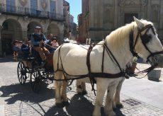 La Guida - Pranzo di Pasquetta a Mondovì
