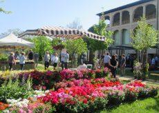 """La Guida - """"Flora"""", tra fiori, piante e natura a Costigliole Saluzzo"""
