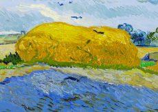 """La Guida - """"Van Gogh, tra il grano e il cielo"""" al Ferrini di Caraglio"""