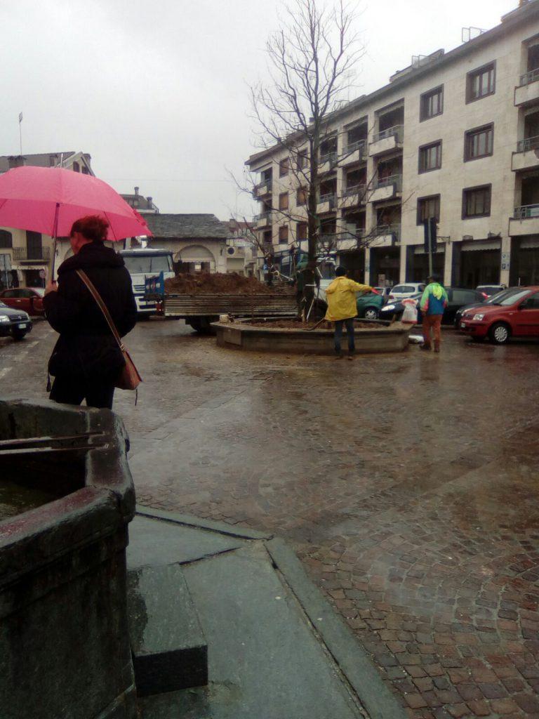 Boves - posa dell'albero in piazza dell'Olmo