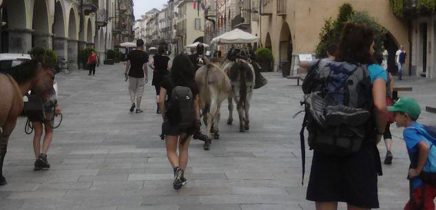 La Guida - La carovana di artisti partita da Cuneo alla volta di Nizza