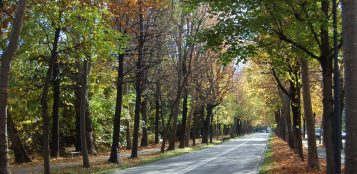 La Guida - Viale Angeli aperto al traffico nel fine settimana