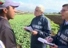 La Guida - Controlli dei Carabinieri per contrastare il lavoro nero