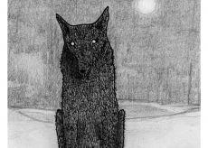 """La Guida - """"L'aritmetica del lupo"""", film a Chiusa Pesio"""