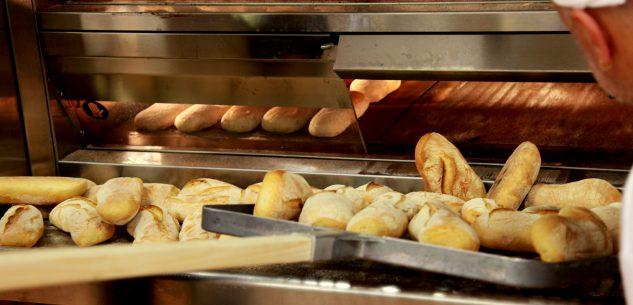 La Guida - Il pane grande protagonista a Savigliano