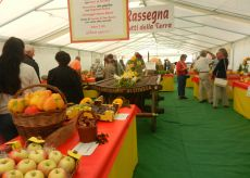 La Guida - Spinetta celebra San Foca