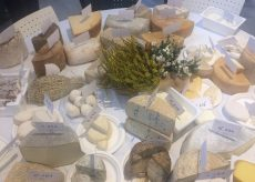 La Guida - A Cuneo il festival dei formaggi