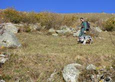 La Guida - Intervento del gruppo cinofilo antiveleno regionale nel Parco del Monviso