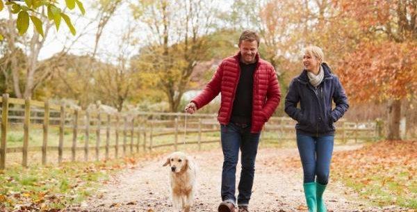 La Guida - Mappatura del Dna dei cani per contrastare l'abbandono delle deiezioni