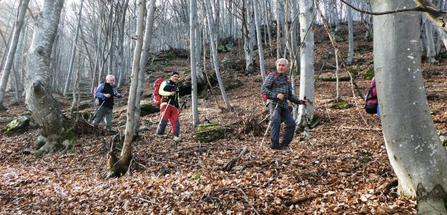 La Guida - Escursioni in valle Gesso, valle Ellero e nelle Langhe
