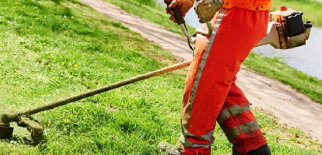 La Guida - In Valle Grana si cercano cinque lavoratori disoccupati