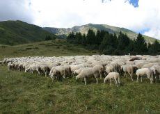 La Guida - Montagna, nuova forza per le terre alte con la legge regionale