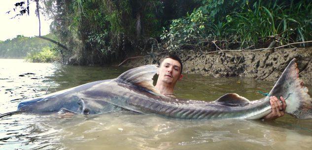 La Guida - Caragliese pesca un pesce da 90 kg in Amazzonia