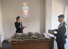 La Guida - Otto chili di marijuana in sacchi nel bagagliaio dell'auto