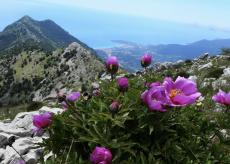 La Guida - Escursioni nelle valli Roya e Maira