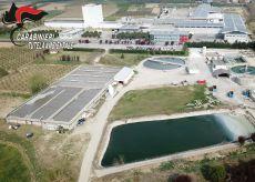La Guida - Italgelatine, i Carabinieri sequestrano quattro impianti su otto