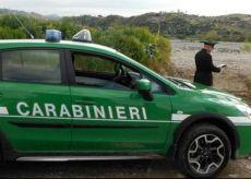 La Guida - Unità cinofila dei Carabinieri interviene a Robilante