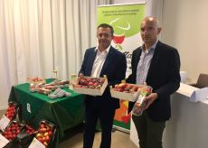 La Guida - Frutta fresca, alleanza produttori-ristoratori per il consumo