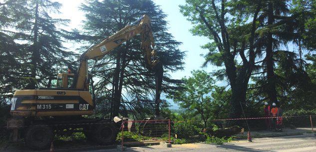La Guida - Corso Marconi da lunedì i lavori per la pista ciclabile