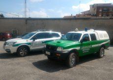 La Guida - Gatti avvelenati a Borgo, bonificata l'area di piazza Sacco e Vanzetti
