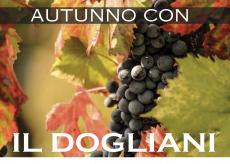"""La Guida - Vino e territorio, da domenica si gusta """"Autunno con il Dogliani"""""""