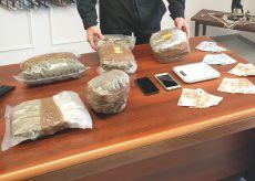 La Guida - Marijuana coltivata e venduta in casa, arrestato 32enne braidese