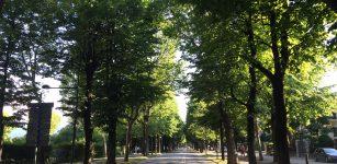 La Guida - Prorogata fino al 14 giugno l'area pedonale in Viale Angeli