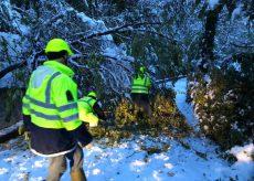 La Guida - Busca, risolti i danni causati dalla neve
