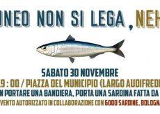 """La Guida - Le """"sardine"""" cuneesi scendono in piazza"""