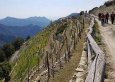 La Guida - Escursioni in valle Roya e nelle Langhe