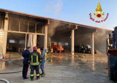 La Guida - Fiamme in una stalla a Caramagna Piemonte, morti 10 vitelli