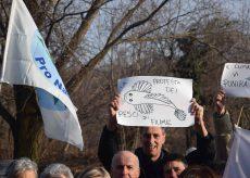 """La Guida - """"La protesta dei pesci di fiume"""" contro le centrali idroelettriche"""