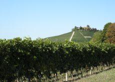 La Guida - Paura per i dazi Usa, anche il vino piemontese cerca di tutelarsi