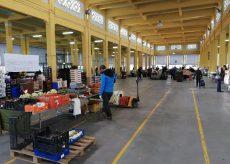 La Guida - Semideserto il mercato del martedì a Cuneo