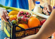 La Guida - Hai un negozio che effettua consegne a domicilio o cerchi qualcuno che ti porti la spesa a casa?