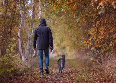 La Guida - È agli arresti domiciliari  ma porta fuori il cane: è evasione