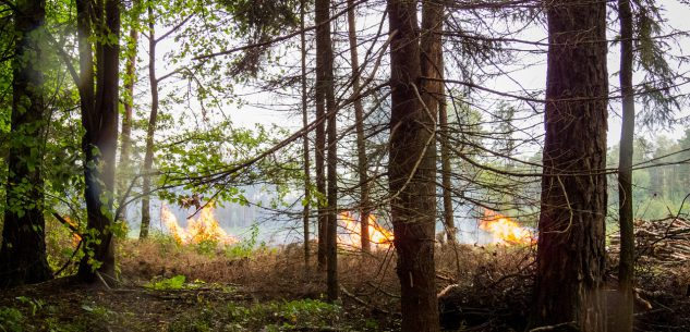 La Guida - Revocato lo stato di massima pericolosità per gli incendi boschivi