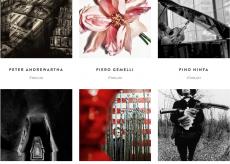 La Guida - Fotografie di grandi artisti in vendita per beneficenza